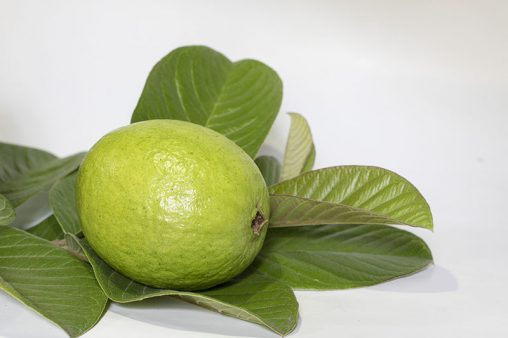 Guavas Fruits with Leaf