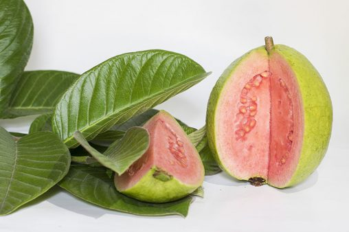 Red Guavas Fruits With Leafs
