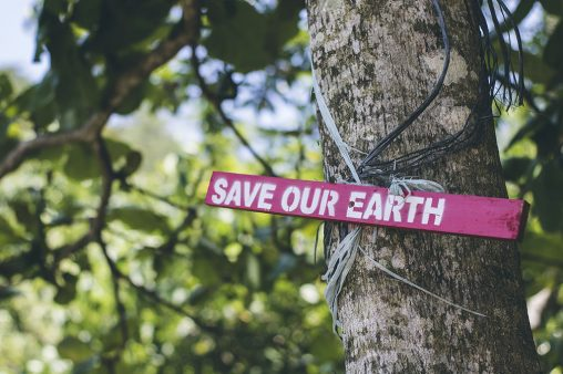 Save our earth signpost on a tree